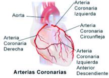 como diagnosticar angina de pecho
