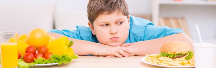 En los que obesidad factores la influyen son cuales