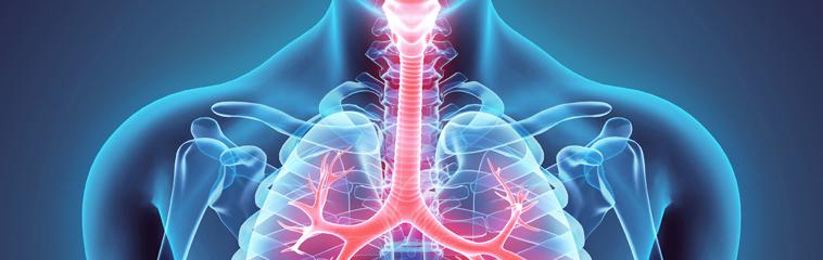 Asma bronquial – Zona Hospitalaria
